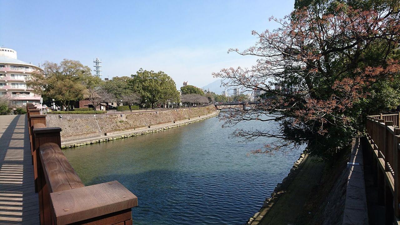 歩いてすぐ、春には満開の桜が美しい名所です
